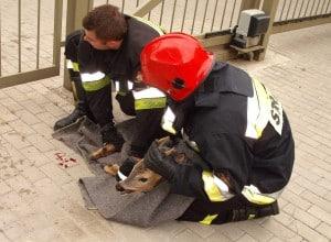 Strażacy uratowali sarenkę