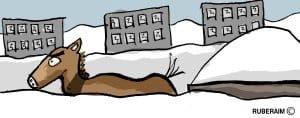 Nadmiar śniegu wywieźli za miasto