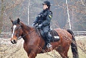 Policja konna zaskoczyła drwali
