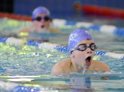 Pływanie. Zimowe mistrzostwa okręgu podkarpackiego w Ropczycach – ZDJĘCIA